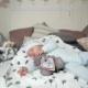 Sweet Dream Cute Boy, Child Hugging a Toy While Sleeping, Small Child Sleeps, Baby Lying on the Bed Nulled