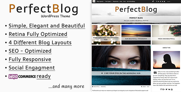 PerfectBlog – Beautiful, Clean and Simple WordPress Blog Theme