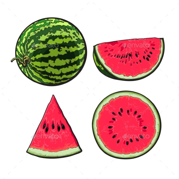 Whole, Half, Quarter and Slice of Ripe Watermelon - Food Objects
