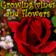 Growing vines and flowers - VideoHive Item for Sale