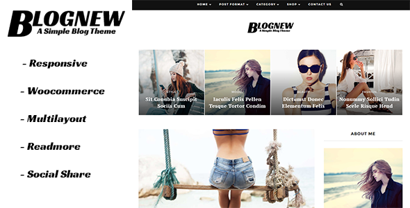 Blognew - A Simple WordPress Blog Theme - Blog / Magazine WordPress