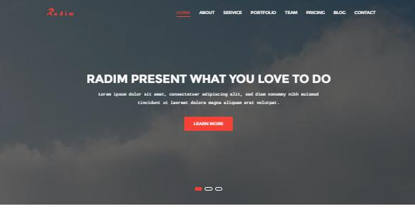 Radim - Corporate &  Business Template