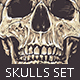 Anatomic Skulls | Vector Pack - GraphicRiver Item for Sale