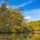 Autumn Landscape - VideoHive Item for Sale