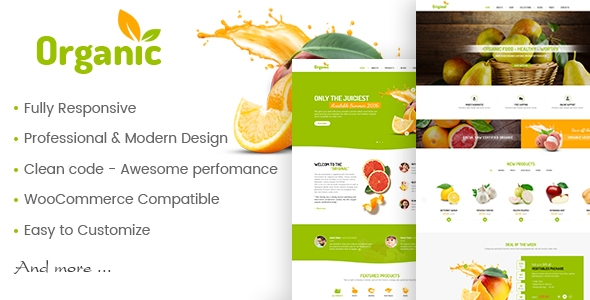 AmyOrganic – Organic and Healthy Theme for WordPress