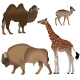 Even-Toed Ungulates Animals - GraphicRiver Item for Sale
