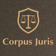 Corpus Juris - Law Firm and Consultation WordPress Theme - ThemeForest Item for Sale