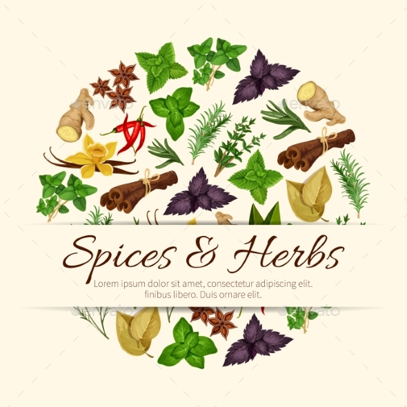 Spices and Herbs Vector Poster - Food Objects