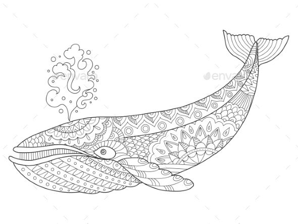 Whale Coloring Book Vector Illustration - Tattoos Vectors