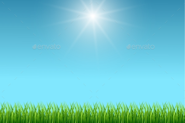 Clear Blue Sky and Green Grass Background - Landscapes Nature