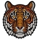 Tiger Head Isolated - GraphicRiver Item for Sale