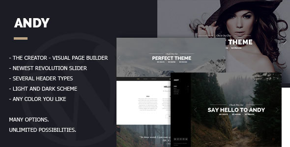 Andy - Multi/One-Page Minimal Parallax Theme - Creative WordPress