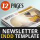 Newsletter Indesign Vol1 - GraphicRiver Item for Sale