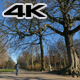 Walking Along the Park in Winter - VideoHive Item for Sale