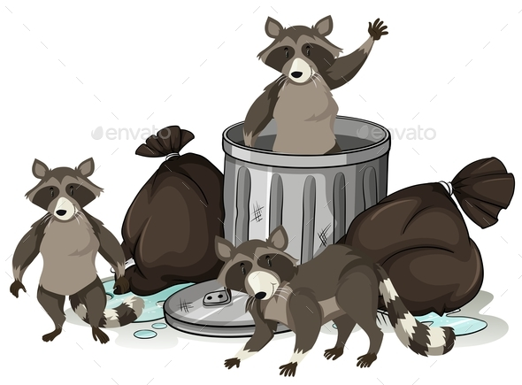 Raccoon Searching Trash for Food - Animals Characters