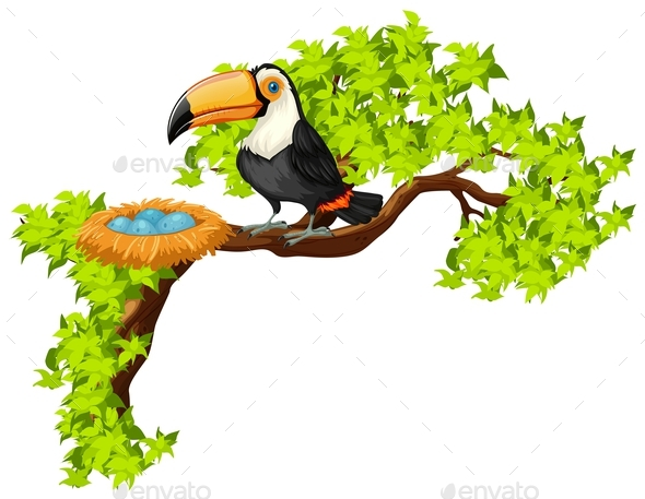 Toucan and Nest on the Tree - Animals Characters