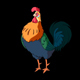 Colorful Rooster Walks and Crows. Classic handmade Animation with Alpha Channel. - VideoHive Item for Sale