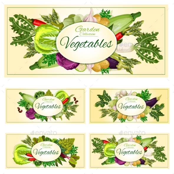 Vegetables, Greens, Veggies Vegetarian Banners Set - Food Objects