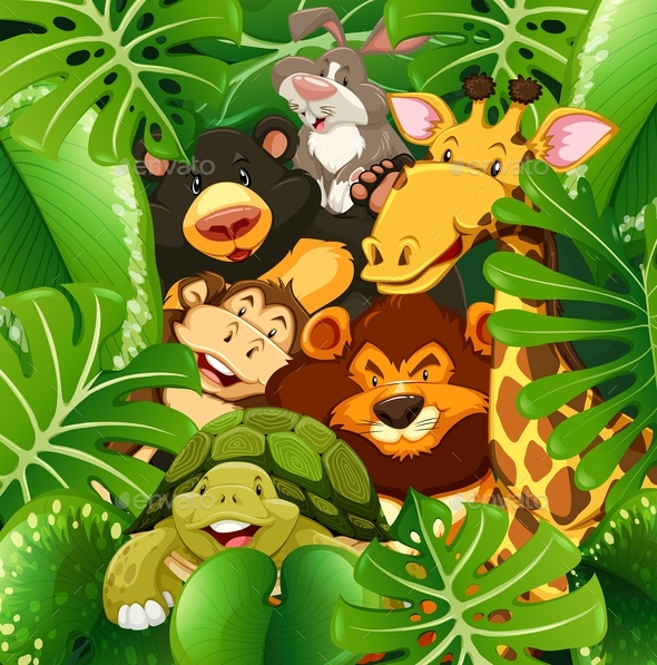 Many Types of Animals in the Bush - Animals Characters