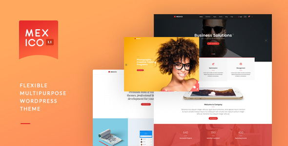 Mexico - Flexible Multipurpose WordPress Theme