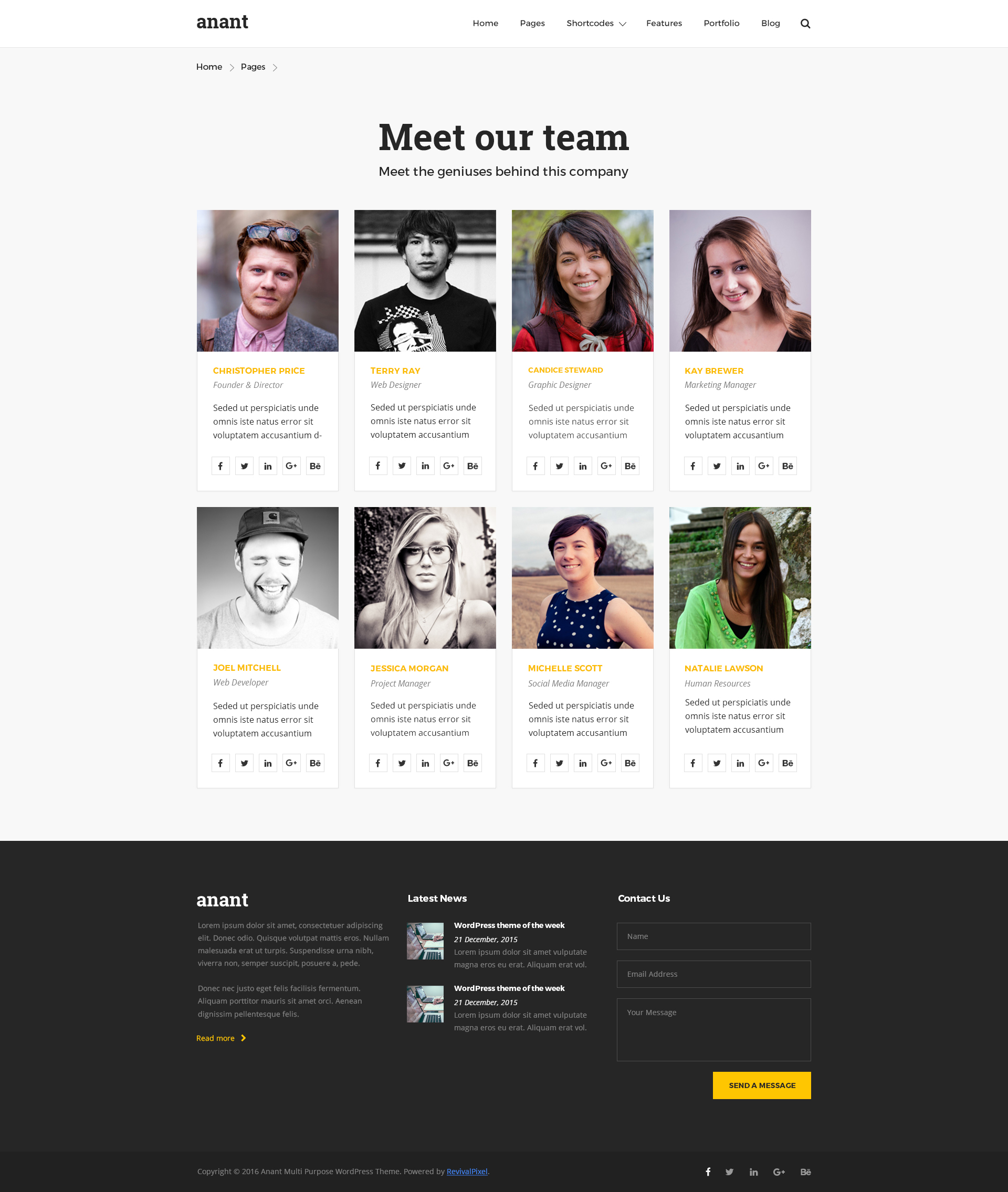 Anant   Multipurpose PSD Template by revivalpixel   ThemeForest