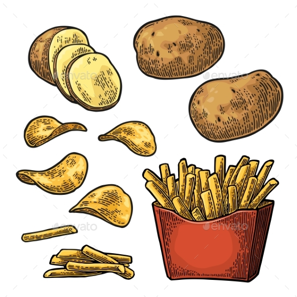 French Fry Stick Potato in Paper Box and Chips - Food Objects