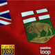 Manitoba Flag HD - VideoHive Item for Sale