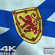 Nova Scotia Flag 4K - VideoHive Item for Sale