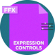 Expression Controls - VideoHive Item for Sale