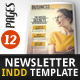 Newsletter Indesign Vol2 - GraphicRiver Item for Sale