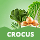Crocus - Electronics Store, Fashion Store & Organic Shop Responsive OpenCart Theme Nulled