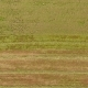 A Drone Footage of a Harvesting Machine on a Large Field - VideoHive Item for Sale