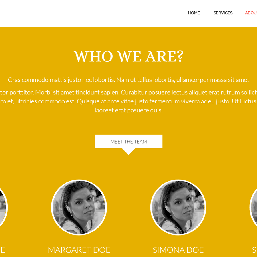 Monny Waves - Modern Parallx HTML Site Template