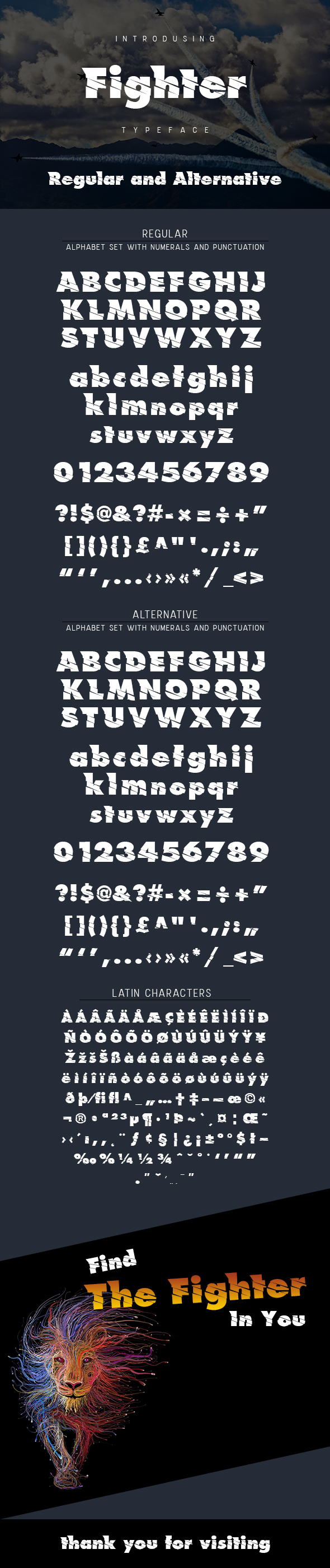 Fighter Typeface - Decorative Fonts