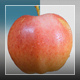 Red Apple - VideoHive Item for Sale