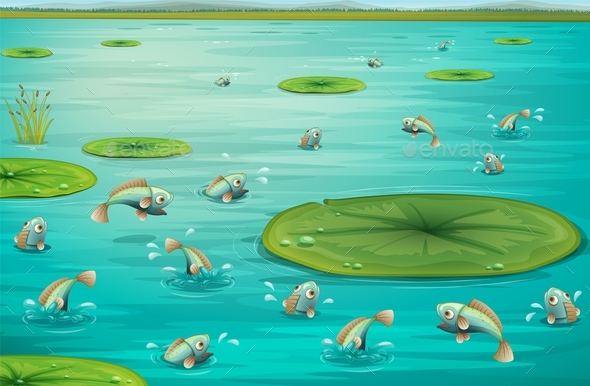 Fishes - Landscapes Nature