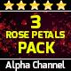 Rose Petals Loop Pack - VideoHive Item for Sale