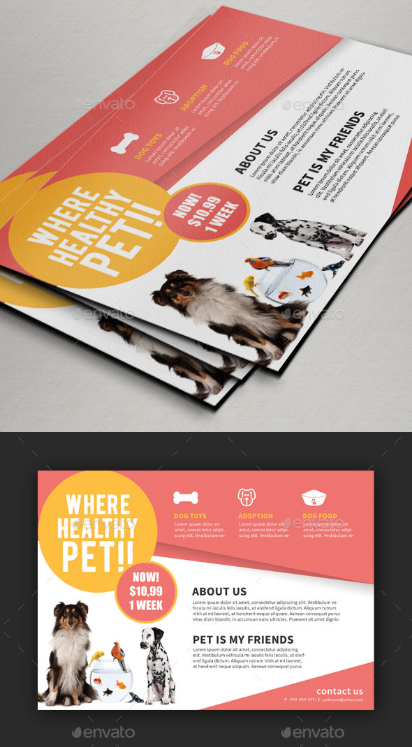Pet Care Flyer / Magazine Ad - Commerce Flyers