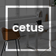 Cetus - Creative Portfolio Psd Template - ThemeForest Item for Sale