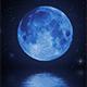 Moon Walkway