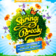 Spring Break Party Flyer vol.2 - GraphicRiver Item for Sale