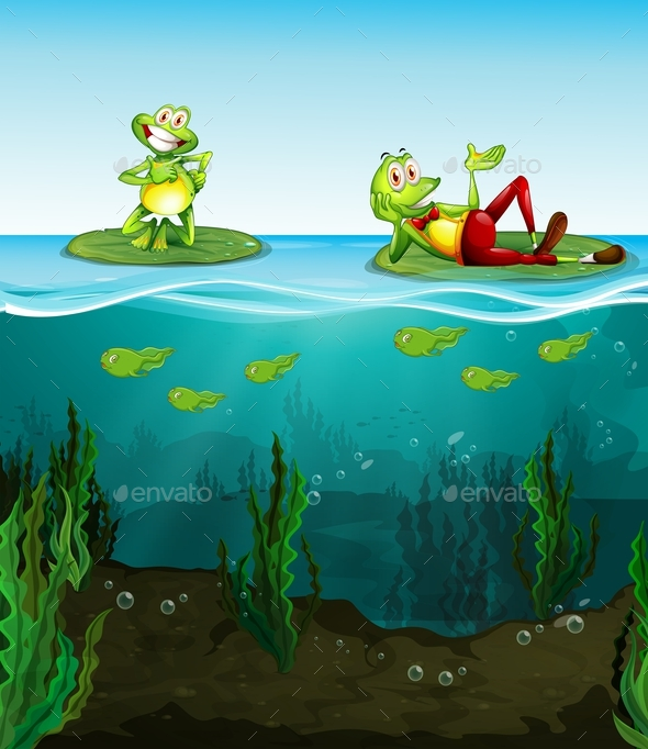 Two Happy Frogs and Tadpoles in the Pond - Animals Characters