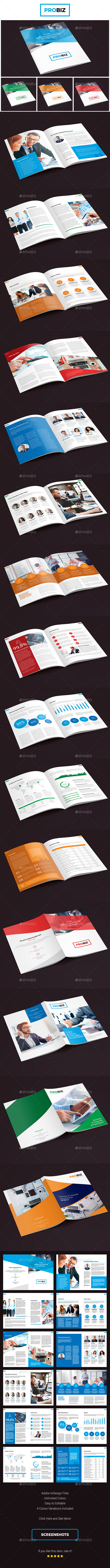 ProBiz – Business and Corporate Annual Report - Corporate Brochures