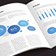 ProBiz – Business and Corporate Annual Report - GraphicRiver Item for Sale