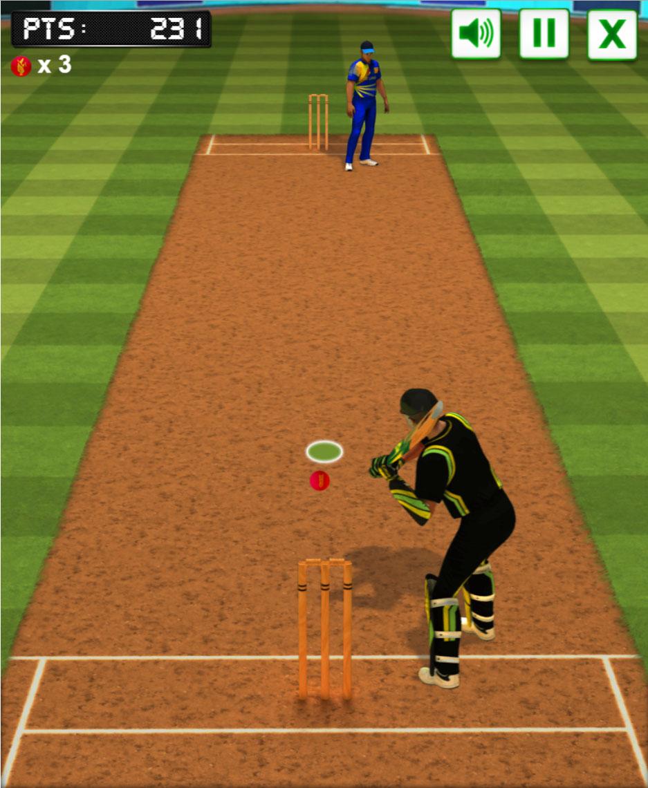 Cricket batter challenge html5 sport game