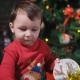 Little Boy with Dark Hair, Wearing a Red Sweater, Deer Playing with Yellow Shiny Christmas Garland