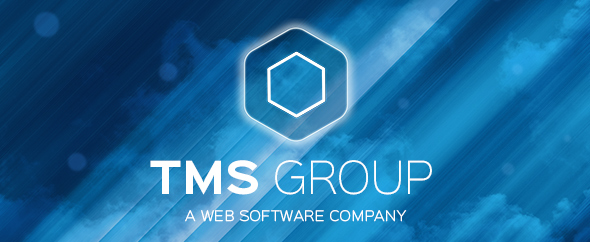 Tms group top banner