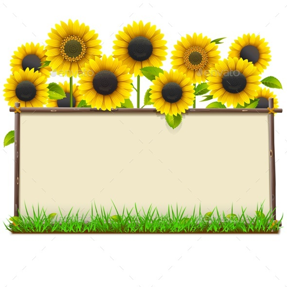 Vector Wooden Frame with Sunflowers - Flowers & Plants Nature