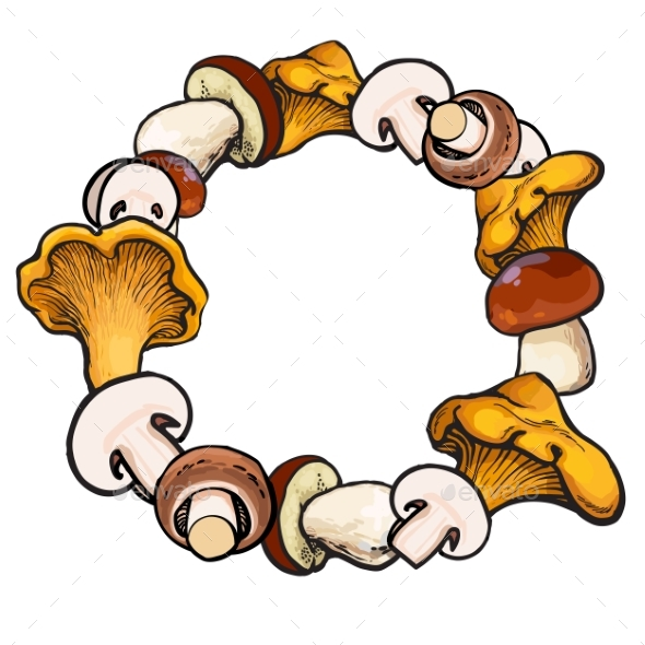 Round Frame of Sketch Edible Mushrooms with Place - Seasons Nature