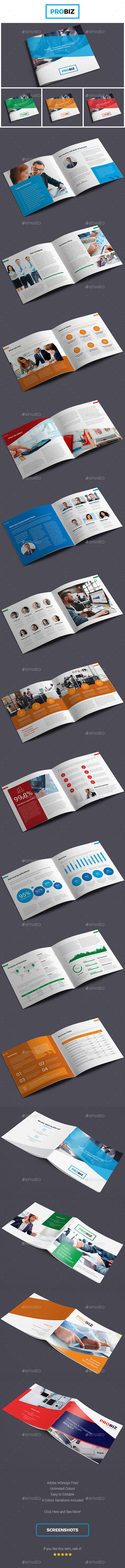 ProBiz – Business and Corporate Annual Report Square - Corporate Brochures